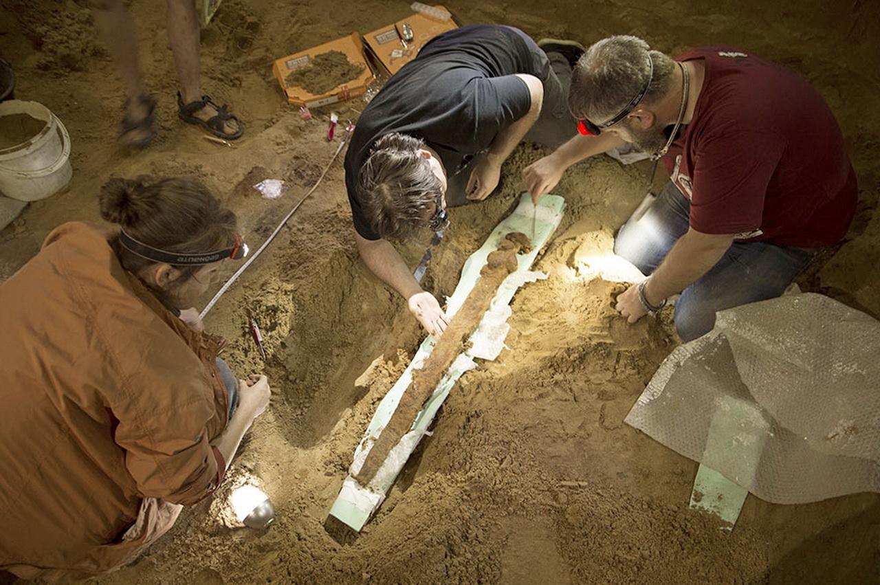 Археологи под смоленском нашли меч дружинника х века.
