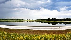 Природное мелководное гиперсолёное содовое озеро Горчина-3 (Кулундинская степь, Алтай), из которого был выделен штамм Омега