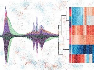 Схема разложения аналитического сигнала на компоненты